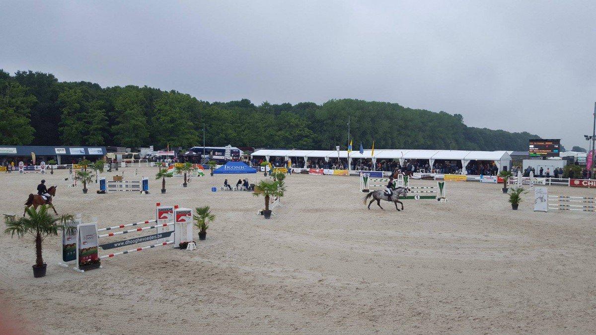 Concours d'équitation